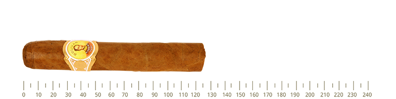 Vinatge Bolivar Royal Coronas 25 Cigars  From Year 2012