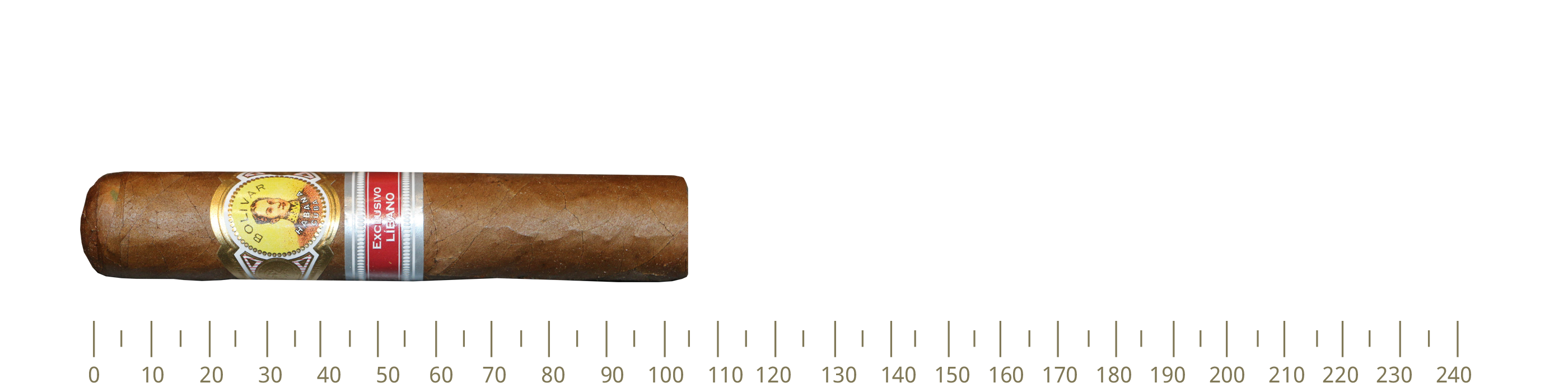 Bolivar Byblos 25 Cigars (RE16)