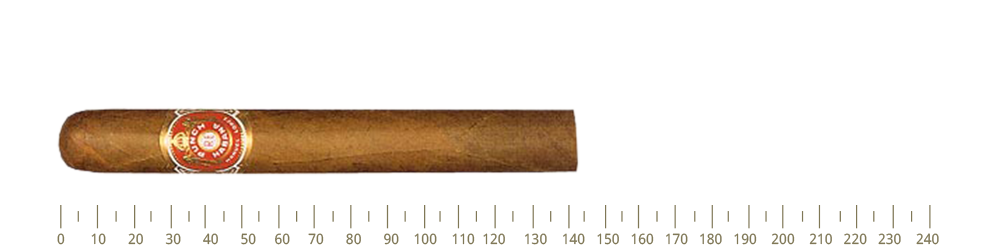 Punch Black Prince  25 Cigars