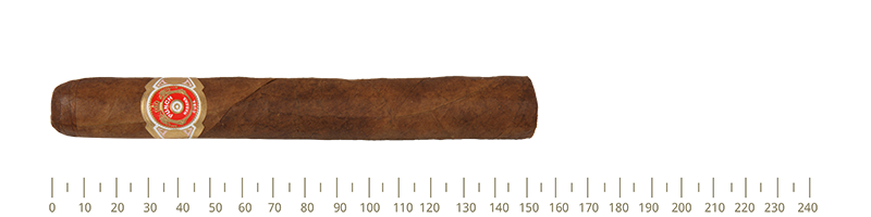 Punch Punch A/T 10 Cigars